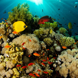 Geoversiv Commitment to Ocean Stewardship