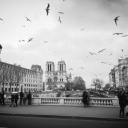 Paris Agreement withdrawal is senseless & wasteful
